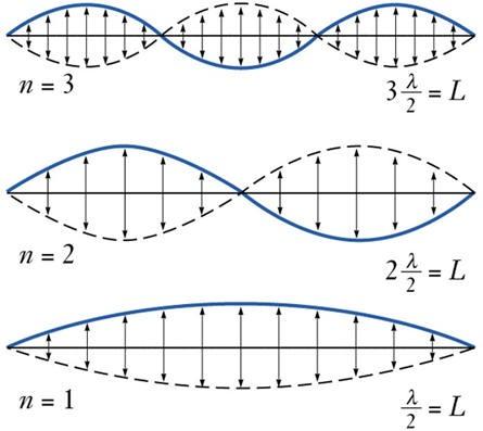 oscillator_1d